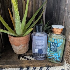 Set of 2 Bath and Body Works Shower Gels
